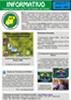 Informativo N1 - PDF