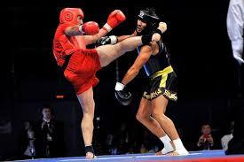 Confederação Brasileira de Kungfu/Wushu